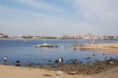兵庫県立甲子園浜海浜公園