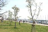 海辺の道公園